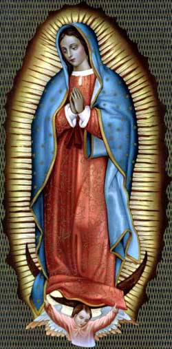 Our Lady of Guadalupe, Madonna of the Americas